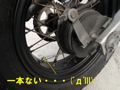 resize4926.jpg